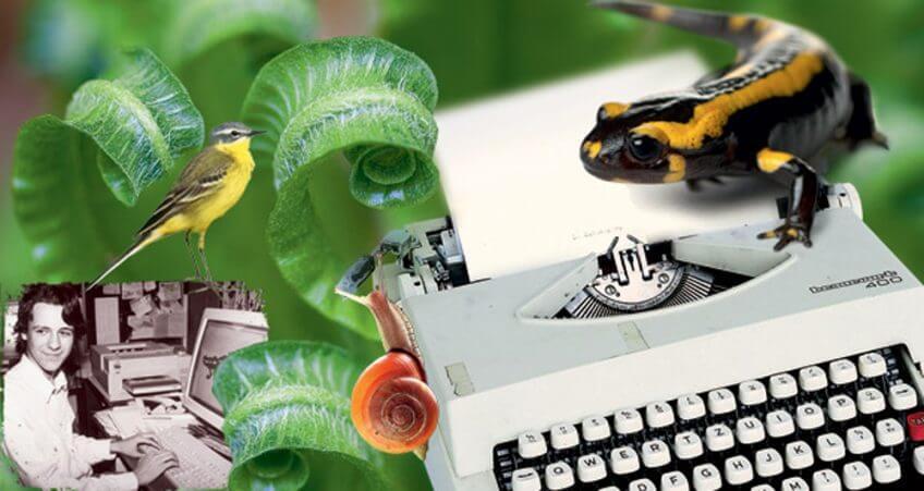 la-salamandre-histoire