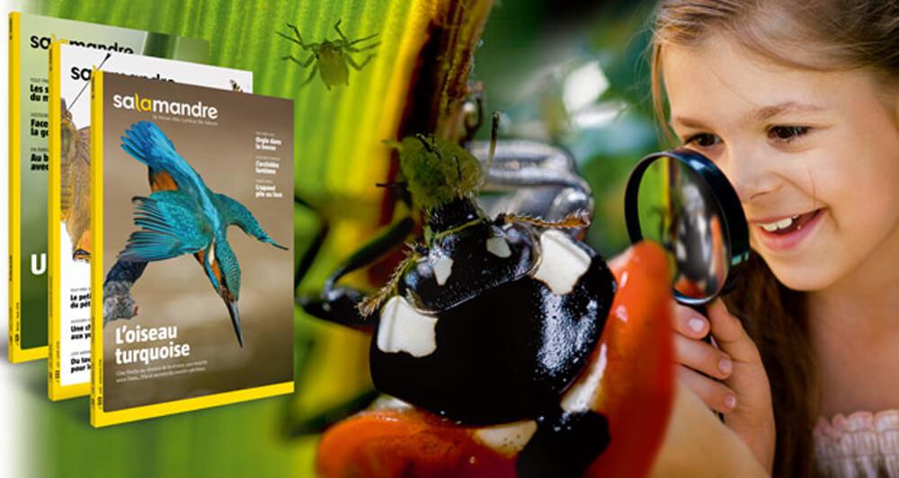 projet salamandre nature magazine