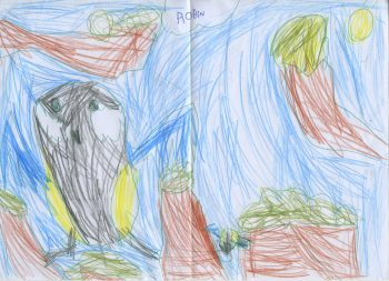 Dessin de Robin