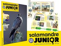 S'abonner à La Salamandre Junior